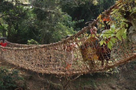 viaggi-in-costa-davorio-transafrica-giungla