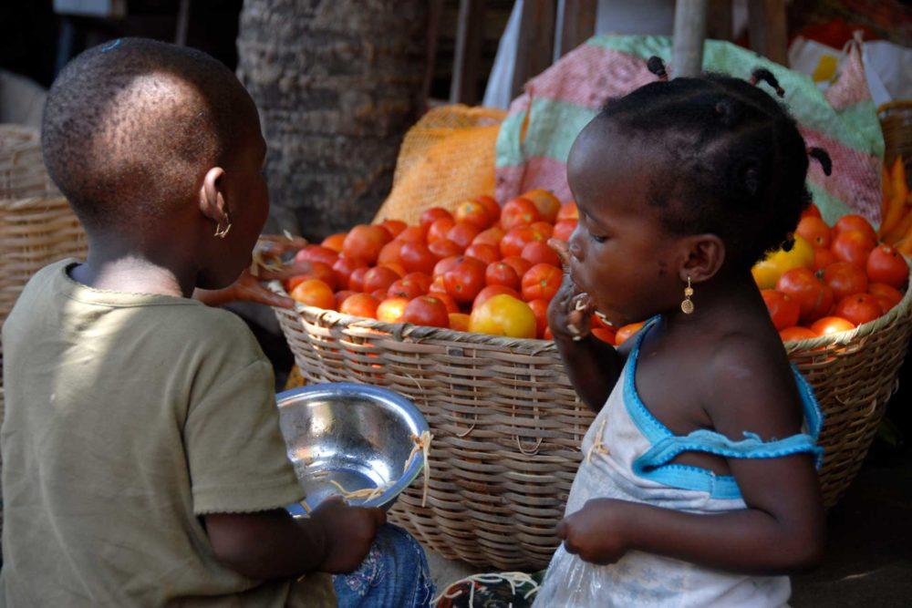 transafrica-articolo-ghana-togo-benin-yam-festival-bimbi
