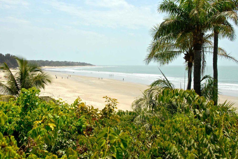 transafrica-senegal-spiaggia-vegetazione